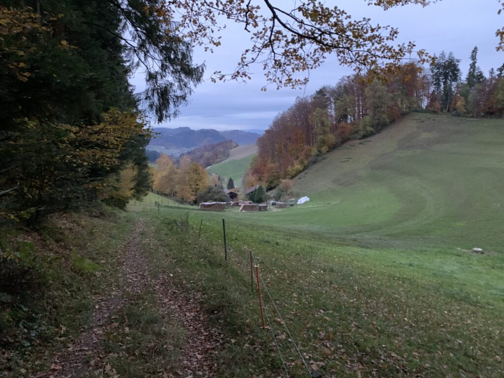 Wanderung 3 Kaltacker-Burgdorf